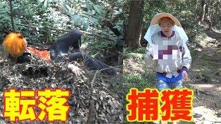 【ガチ奇跡】絶滅危惧種のオオゴキブリを捕獲せよ!!!