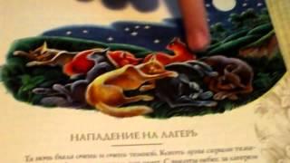 Обзор на путеводитель Коты воители Секреты племён часть3