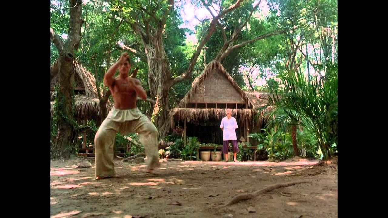 Download Kickboxer (1989) - The Tree scene + Training sequences HD - VAN DAMME