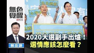 《無色覺醒》 賴岳謙 |2020大選副手出爐!選情應該怎麼看?|20191114