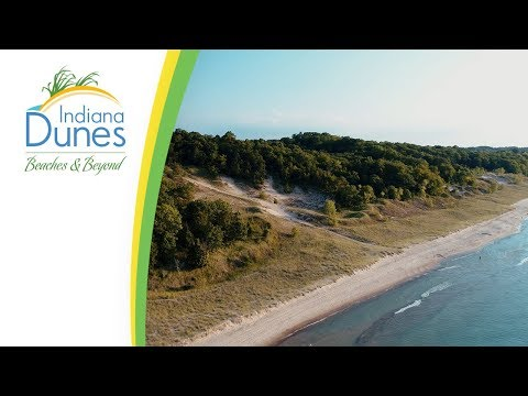 Where Are The Indiana Dunes Beaches? — Dunes 101: Beach Experience | Indiana Dunes