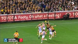 Qualifying Final 1 - Hawthorn v Geelong Highlights