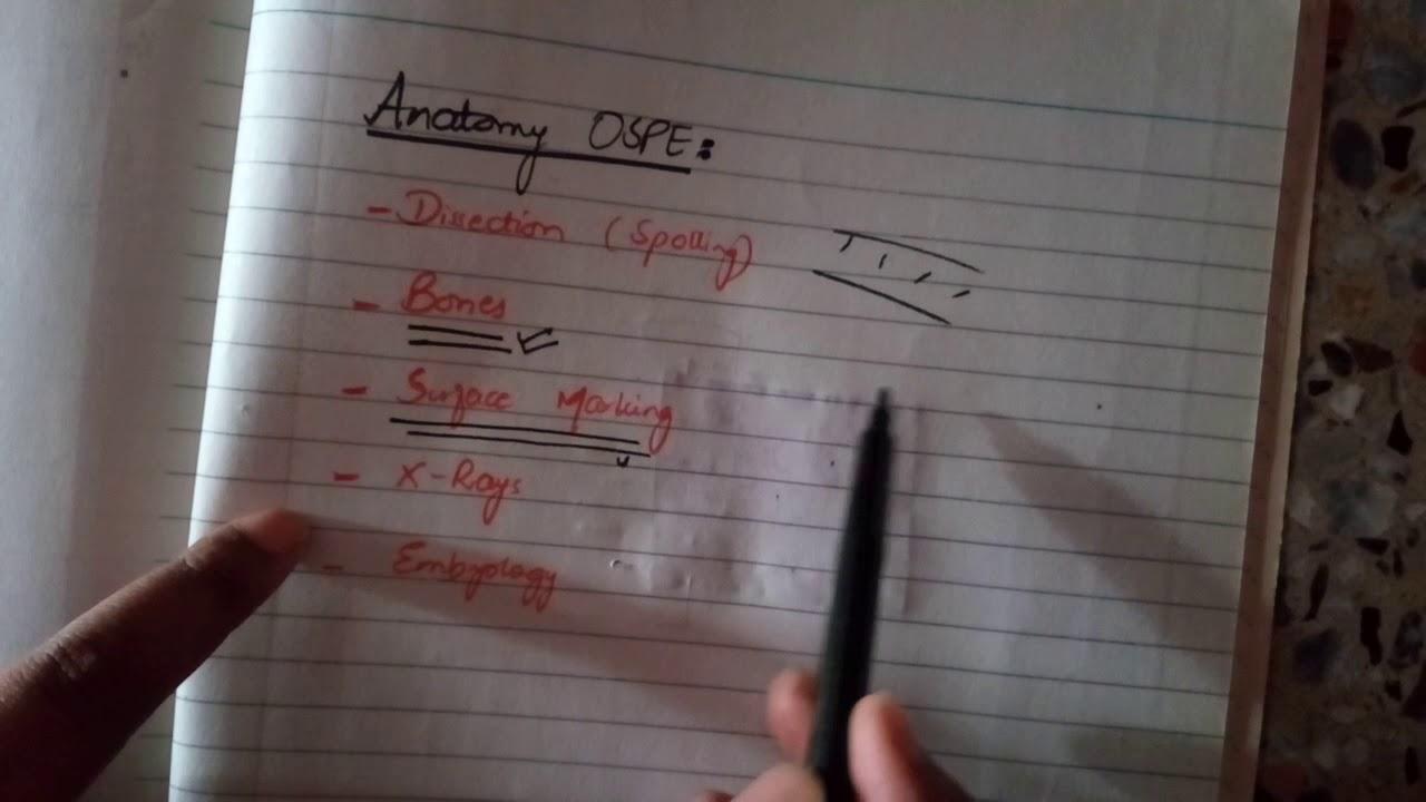 WAY to prepare ANATOMY OSPE! - YouTube