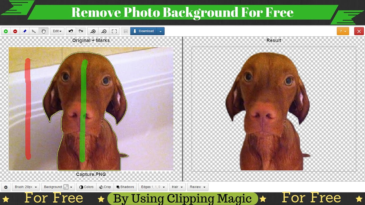 Background image remover free - How To Remove Photo Background For Free Using Clipping Magic