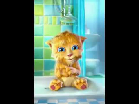 Funny Tom Cat Videos Dailymotion