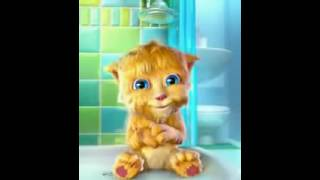Goog Morning Talking Tom Cat Punjabi Billi Very Funny Video   Video Dailymotion