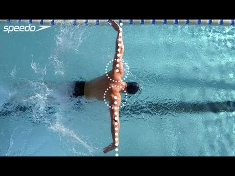 Butterfly Technique By Speedo - Presented By SwimShop