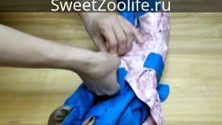 Одежда для собак. Интернет-зоомагазин SweetZoolife.ru