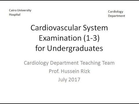 Cardiovascular system examination 1-3