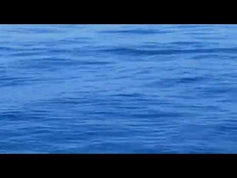 'Sea Organ' by Nikola Bašić (Zadar, Croatia)