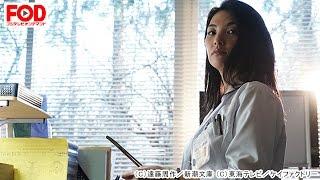 関東の病院で医師として働く大河内葉子(田中麗奈)。彼女のもとに小説...