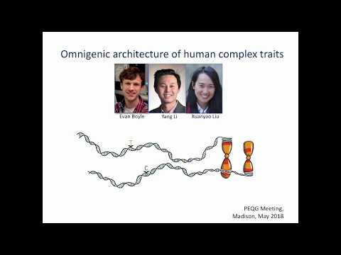 Pritchard: Omnigenic Architecture of Human Complex Traits