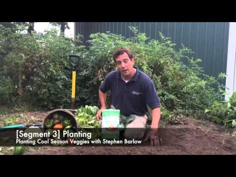 Barlow's TV's Episode 24 Planting Cool Season Veggies with Stephen Barlow.
