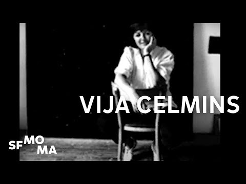 How to Experience a Painting - Vija Celmins