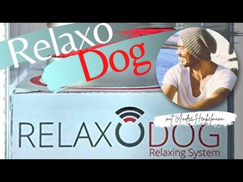 Relaxodog/Relaxopet - So benutzt du es richtig! Profi-Tipps