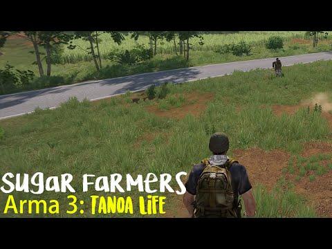 Arma 3: Tanoa Life - Sugar Farmers