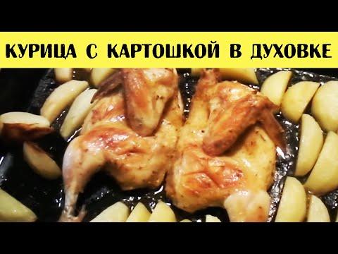Курица с картошкой в духовке. Курица с картофелем рецепт приготовления