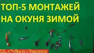 ТОП 5 самых уловистых монтажей и приманок для ловли ОКУНЯ зимой ТОП 5 зимних приманок на окуня
