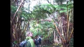 2012 Hawaii Astro/Geology Field Trip (Day 3)
