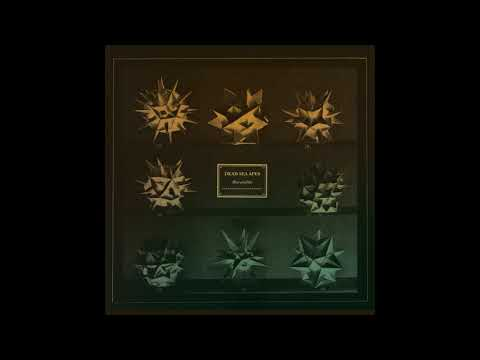 Dead Sea Apes - Recondite(Full Album)