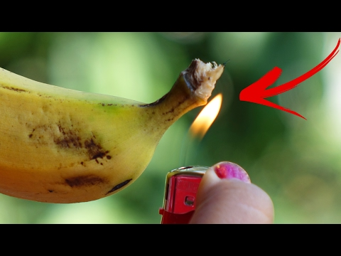 Thumbnail: Fruit VS Firecracker - Amazing Experiment in Slow Motion - The Most Satisfying Video In The World