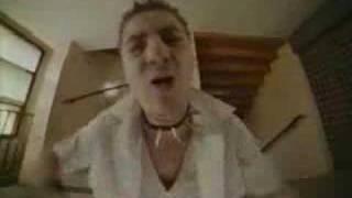 Svinkels - Reveille le Punk