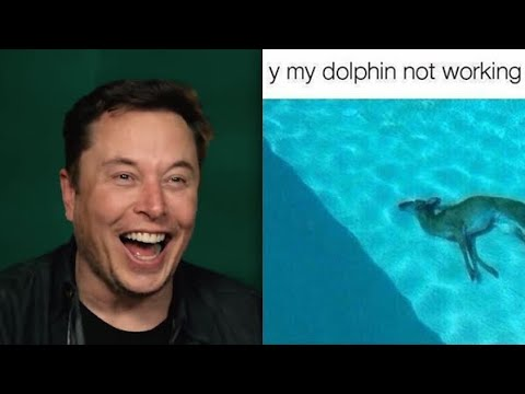 Elon Musk Dead Deer Memes