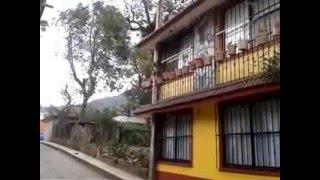 Surada en Coscomatepec, Veracruz vientos de 80km/h
