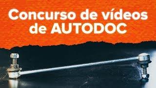 Tutoriales en vídeo y manuales de reparación para RENAULT CLIO - mantenga su coche en plena forma