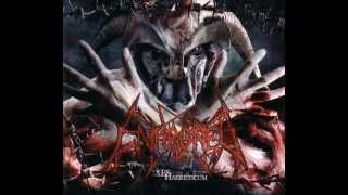Enthroned - Blacker than Black