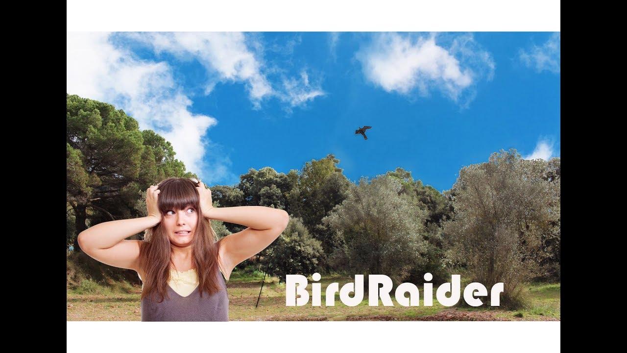 Espantapájaros cometa anti aves