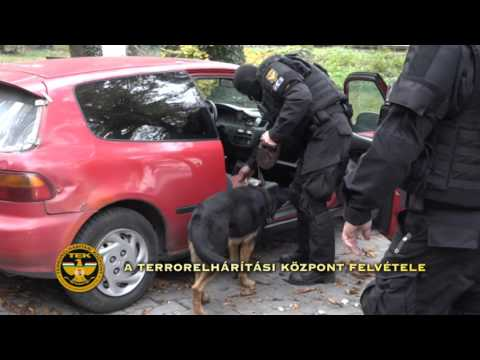 A Teréz körúti robbantó elfogása