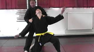 Karate defence from straight punch