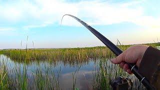 ТОЛЬКО ЗАКИНУЛ УДОЧКУ И ...... Ловля на поплавок в речке. Рыбалка 2019.