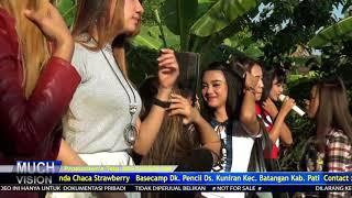 Video SAYANG 2   ALL ARTIS MANHATTAN BATMAN Ngelom Bulumanis 2018 download MP3, 3GP, MP4, WEBM, AVI, FLV Agustus 2018