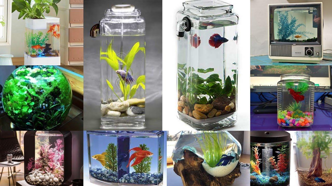 Model Aquarium Unik Keren Aquarium Ikan Cupang Ikan Hias Ikan Ada Ikan Youtube