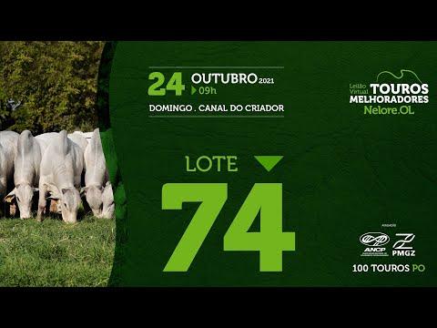 LOTE 74 - LEILÃO VIRTUAL DE TOUROS MELHORADORES  - NELORE OL - PO 2021