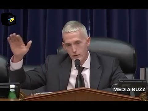 Trey Gowdy House Oversight Committee Hearing on Opioid Crisis 5/17/18
