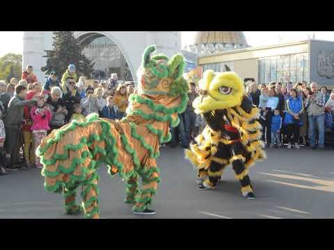 Китайский танец Льва и Дракона