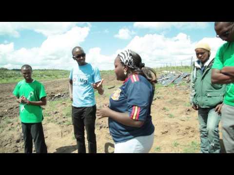 Farm Capital Africa. Our Story so far...