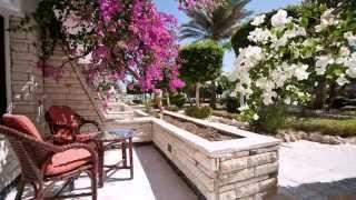 видео Festival Shedwan Golden Beach Resort 3* Египет Хургада  Egypt Hurghada