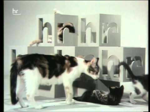 hr Katzen