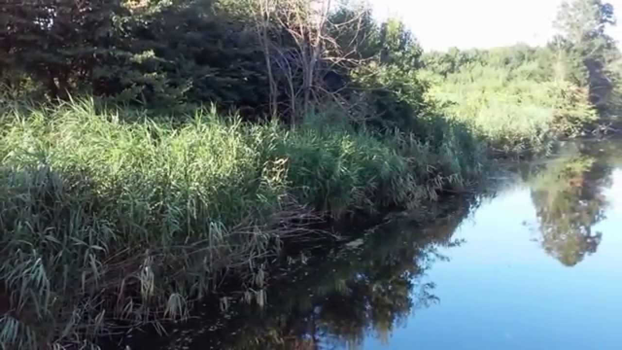 Риболов на река Караагач - YouTube