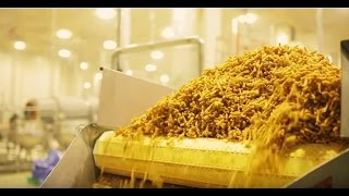 Pepsico -Kurkure | How its Made