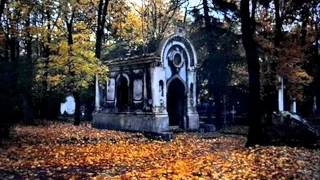 Watch Fountains Of Wayne Cemetery Guns video