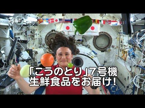 「こうのとり」7号機で運ばれた生鮮食品の紹介