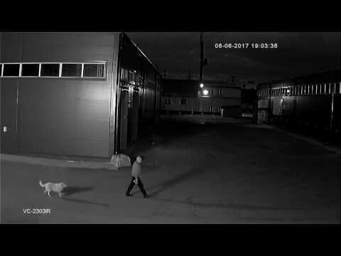 камера видеонаблюдения 3 g