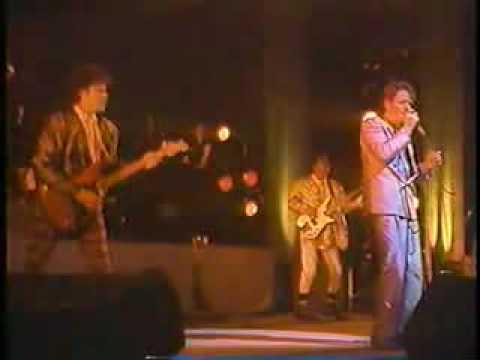 Robert Palmer - Hyperactive (Live)