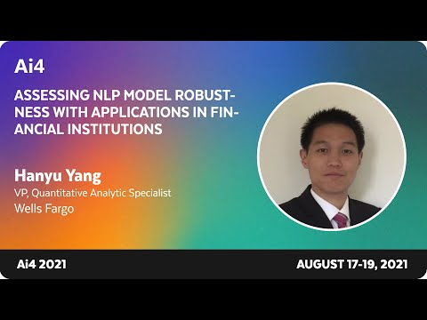 Assessing NLP Model Robustness with Applications in Financial Institutions