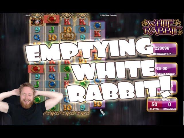 White Rabbit MADNESS!!
